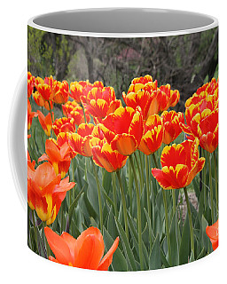 Coffee Mug featuring the photograph Tulips From Brooklyn by John Telfer