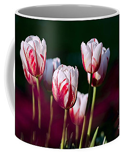 Coffee Mug featuring the photograph Tulips Garden Flowers Color Spring Nature by Paul Fearn