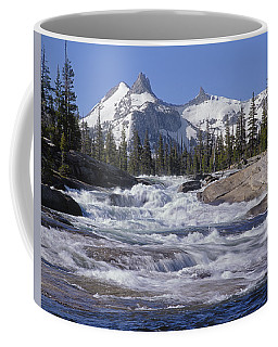 6m6539-tuolumne River  Coffee Mug