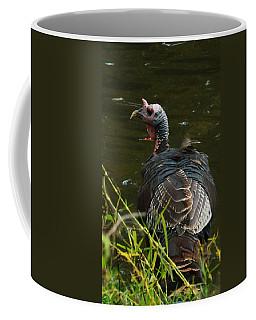 Turkey At Lake Coffee Mug