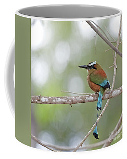 Turquoise Pendant.. Coffee Mug
