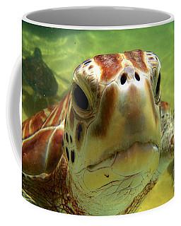 Turtle Face Coffee Mug