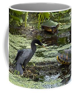 Turtles And Anhinga Coffee Mug