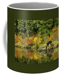 Tuti Fruti Colors And Eye Candy Reflections Coffee Mug