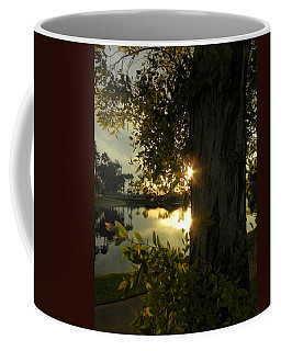 Coffee Mug featuring the photograph Twilight Splendor by Deb Halloran
