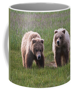 Twin Bear Cubs Coffee Mug
