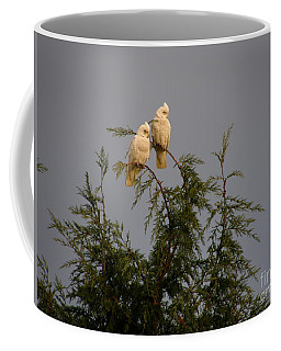 Twin Cockatoos Coffee Mug