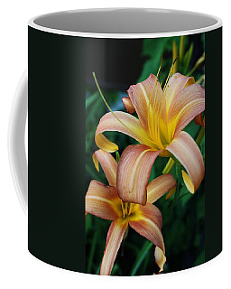 Coffee Mug featuring the photograph Twin Daylilies by Bruce Bley