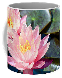 Two Pink Waterlilies Coffee Mug