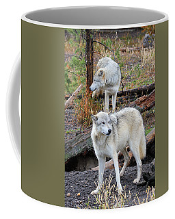Coffee Mug featuring the photograph Twin Wolves by Athena Mckinzie