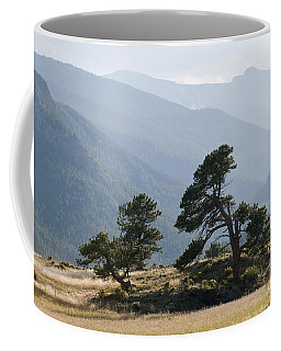 Twisted Pines Coffee Mug