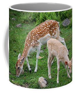 Coffee Mug featuring the photograph Two Babes by Bianca Nadeau