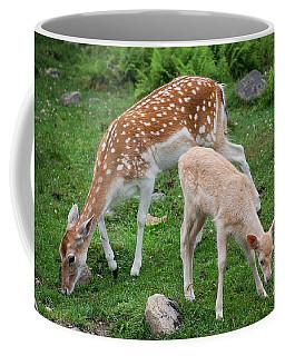 Two Babes Coffee Mug