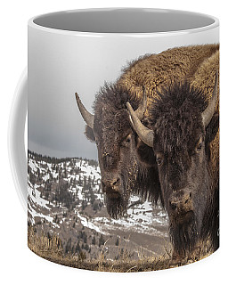 Two Bison Coffee Mug