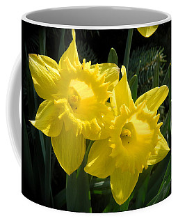 Coffee Mug featuring the photograph Two Daffodils by Kathy Barney