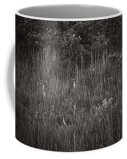 Coffee Mug featuring the photograph Two Deer Hiding by Bradley R Youngberg