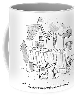 Two Dogs Are Speaking With A Cat Walking Near By Coffee Mug
