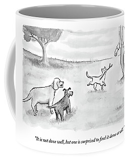 Two Dogs Criticize A Cat Who Has Just Retrieved Coffee Mug