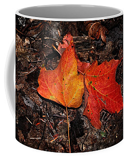 Two Fallen Autumn Leaves Coffee Mug