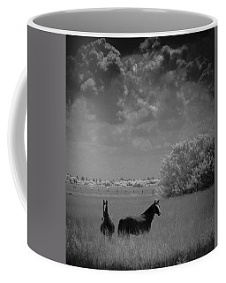 Two Horses Coffee Mug by Bradley R Youngberg