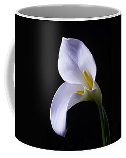 Two In Love Coffee Mug