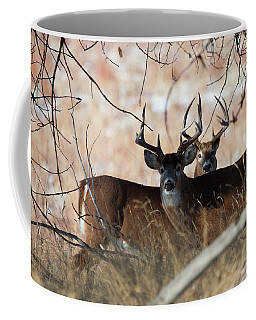 Coffee Mug featuring the photograph Two In The Bush by Jim Garrison