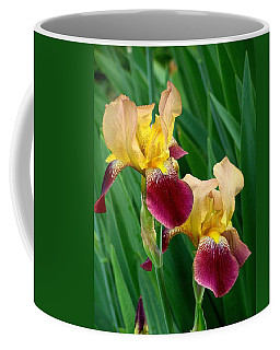 Two Iris Coffee Mug
