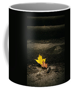 Two Leaves On A Staircase Coffee Mug by Scott Norris
