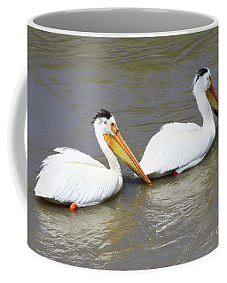 Coffee Mug featuring the photograph Two Pelicans by Alyce Taylor