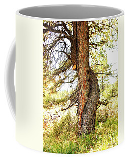 Two Pines Intertwined  Coffee Mug