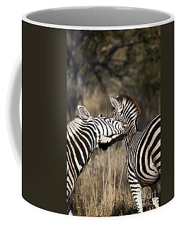 Coffee Mug featuring the photograph Two Plains Zebra Botswana by Liz Leyden