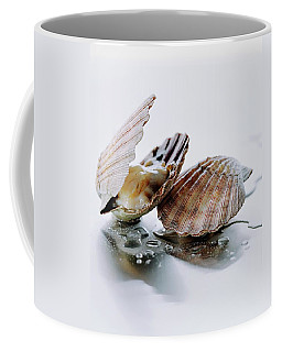 Two Scallops Coffee Mug