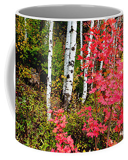 Uinta Colors Coffee Mug