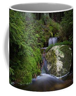Ulrichswasser, Harz Coffee Mug