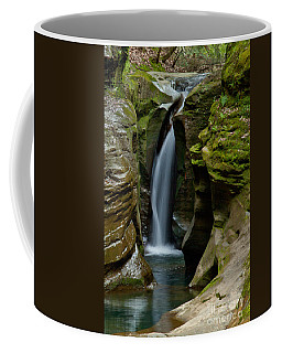 Un-named Falls Coffee Mug