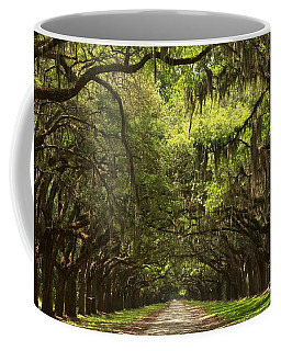 Under The Ancient Oaks Coffee Mug