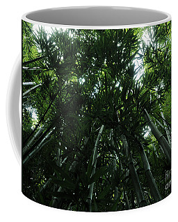 Coffee Mug featuring the photograph Under The Bamboo Haleakala National Park  by Vivian Christopher