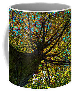 Under The Tree S Skirt Coffee Mug
