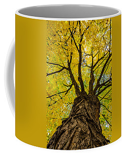 Under The Yellow Canopy Coffee Mug