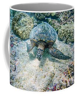 Swimming Turtle Coffee Mug