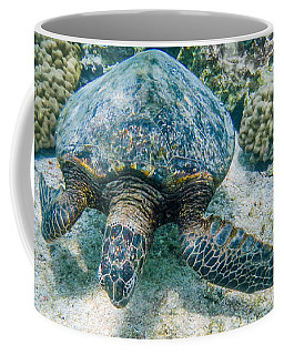 Swimming Turtle Coffee Mug