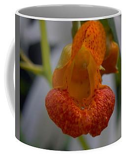 Unidetified Wildflower Coffee Mug