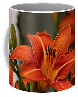 Up Close And Personal Two Coffee Mug by Jeanette C Landstrom