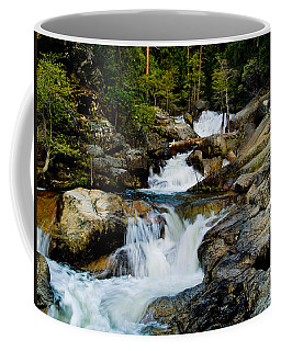 Up The Creek Coffee Mug