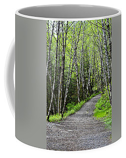 Coffee Mug featuring the photograph Up The Trail by Cathy Mahnke