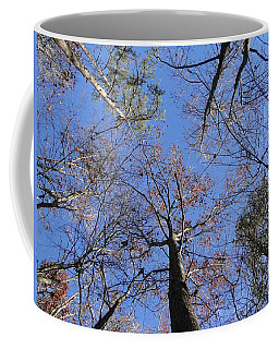 Up Through The Forest Coffee Mug