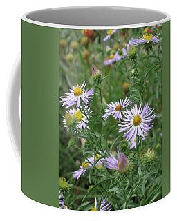 Uplifted Asters Coffee Mug