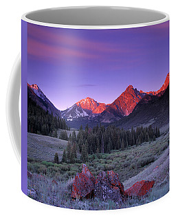 Upper Pahsimeroi Coffee Mug by Leland D Howard
