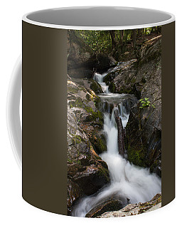 Upper Pup Creek Falls Coffee Mug
