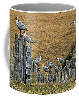 End Of The Road Birds Coffee Mug
